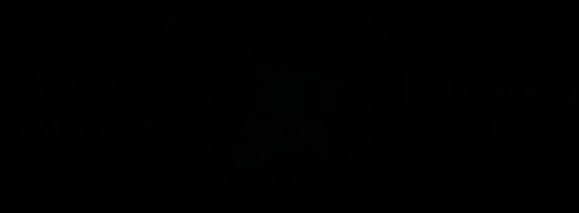 Logo Titel